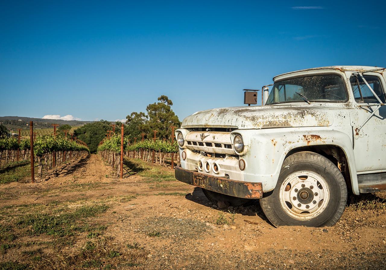 vins-californiens